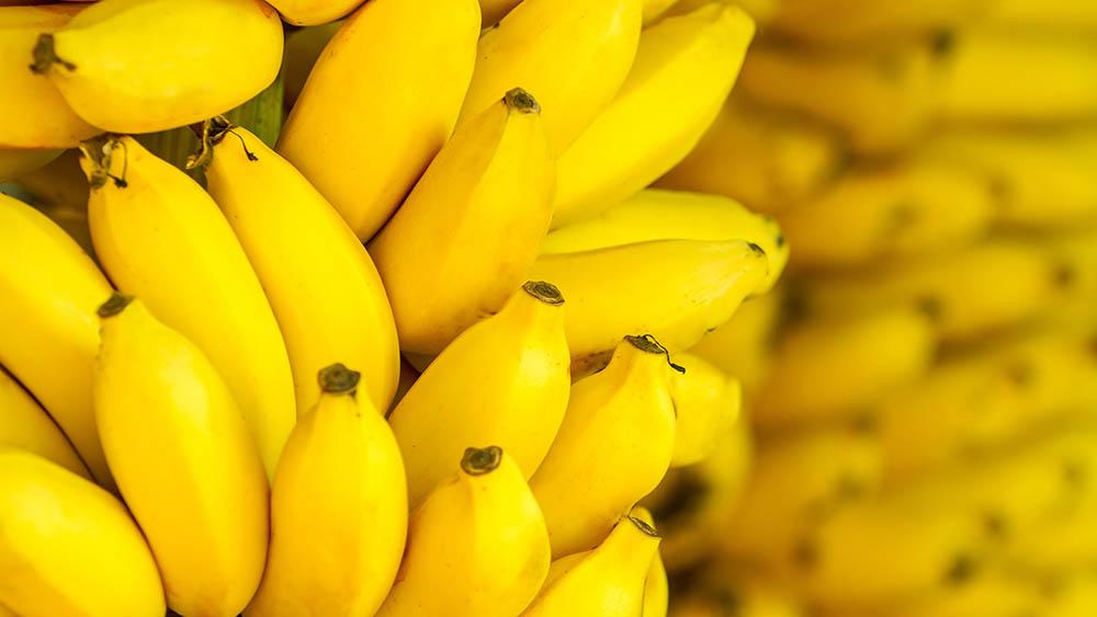 0626c886bd Alimentos que ajudam em caso de diarreia | Vencer o Câncer - Vencer ...